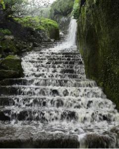 Waterfall Stairway, India