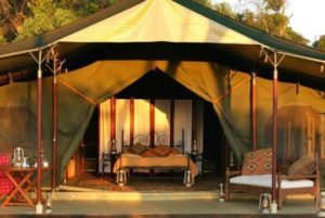 Elephant Pepper Camp, Maasai Mara