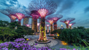 Gardens y the Bay, Singapore